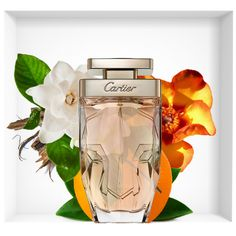 Best Fragrance For Men, Best Fragrances, Nail Art Courses, Perfume Display, Cartier Panthere, Best Eyebrow Products, Cosmetics & Perfume, Perfume Collection, Perfume Bottles