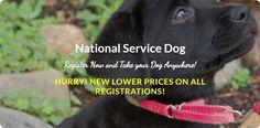 National Service Dog Registry