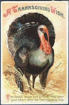 Thanksgiving Big Tom Turkey