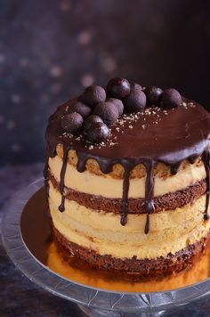 Somlói galuska torta recept házilag Somló sponge cake with chocolate and vanilla custard filling and walnuts Sponge Cake Roll, Sponge Cake Recipes, Heathly Dessert Recipes, Baking Recipes, Cookie Recipes, Thanksgiving Baking, Orange Recipes, Baked Chicken Recipes, Savoury Cake