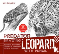 Drawing Leopard With Pencil