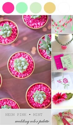 Neon Pink and Mint   Wedding Color Palette
