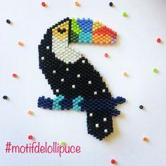 """1 mentions J'aime, 1 commentaires - Lollipuce (@lollipuce) sur Instagram : """"Il y a déjà quelques toucans dans le concours donc au début je ne voulais pas en faire mais en même…"""""""