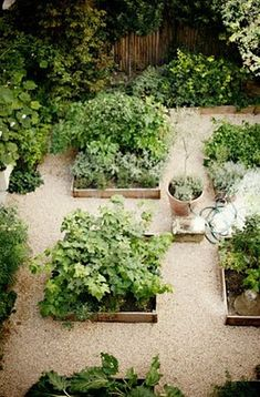 The Potager - a French kitchen garden, raised beds, paired with pea gravel paths Garden Spaces, Patio Garden, Cottage Garden, Outdoor, Outdoor Gardens, Garden Beds, Dream Garden, Beautiful Gardens, Kitchen Garden