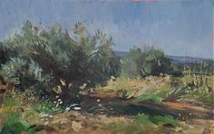 Julian Merrow-Smith 'Olive Grove', oil on linen
