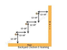 proper-chicken-roost-heights-for-multiple-level-perches-wm.jpg 640×480 pixels