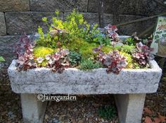 These are detailed instructions on how to make a trough planter out of hypertufa mix. Hypertufa is a cement like material that is much lighter in weight than regular concrete, made using Portland C… Concrete Patios, Diy Concrete Planters, Trough Planters, Garden Planters, Wall Planters, Succulent Planters, Balcony Garden, Succulents Garden, Garden Troughs