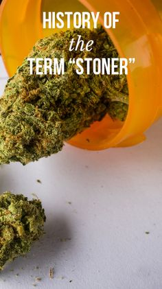 "History of the term ""stoner"" 