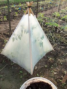 DIY Solar Pyramids: Plant, water and mulch. Construct pyramid - 4 posts tied together. Cover with greenhouse plastic film. You don't need to worry about watering again. A good start for tomatoes and zucchini. Vegetables, Garden