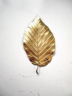 Gold painted leaf...not sure what I use with these but a pretty and simple DIY idea.
