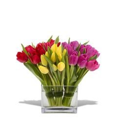 tulip arrangements - Google Search