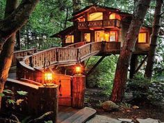 Adult-sized tree house