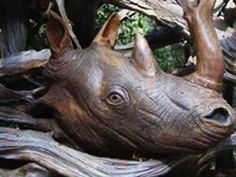 Rêver de Rhinocéros - ©Paul Baliker