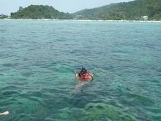Snorkling in Phi Phi island :)