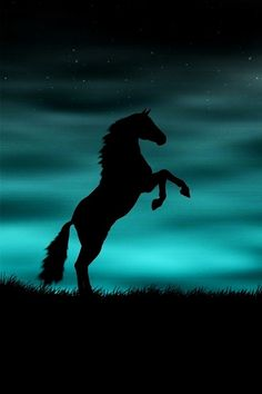 Turquoise Blue Sky and Black Horse Silhouette Pretty Horses, Horse Love, Beautiful Horses, Animals Beautiful, Beautiful Wallpapers For Iphone, Funny Wallpapers, Iphone Wallpapers, Vintage Wallpapers, Desktop Wallpapers