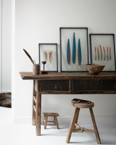 Framed feathers by Lola&Kate