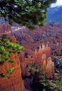 Bryce Canyon, Utah...hiked to bottom and back up...equivalent of a 55-story building in 90º+ heat and high altitude.