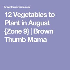 12 Vegetables to Plant in August {Zone 9} | Brown Thumb Mama