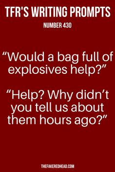 """Would a bag full of explosives help? Why didn't you tell us about them hours ago?"