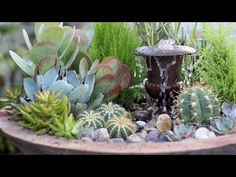 You might not think that succulents and fountains go together, but the folks over at Garden Answer have come up with this cool design as part of their Triple Urn… Succulent Arrangements, Succulents Garden, Succulent Planters, Diy Garden, Garden Pots, Garden Ideas, Buy Succulents Online, Big Planters, November