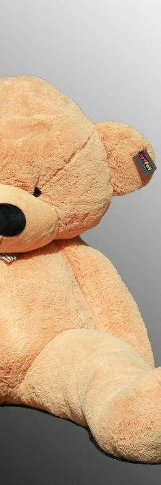 Huge Teddy Bears, Giant Teddy Bear, Brown Teddy Bear, Giant Stuffed Animals, Teddy Bear Party, Teddy Bear Pictures, We Bear, Cool Pets, Plush Animals