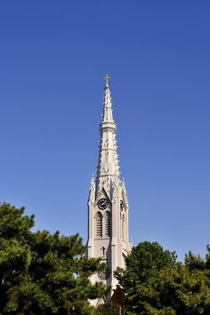 Basilica of St. Mary of the Immaculate Conception, Norfolk VA