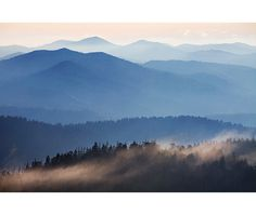Graphic Design Discover Mountain Ridges Fine Art Photo Print Great Smokies Landscape Photography Clingmans Dome Dawn Sunrise Fog Smokys Mountain View from Clingmans Dome Great Smoky Mountains Mixed Media Photography, Photography Tips, Landscape Photography, Digital Photography, Photography Backdrops, Fine Art Photo, Photo Art, Landscape Photos, Landscape Art