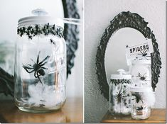 Spiders in Mason Jar