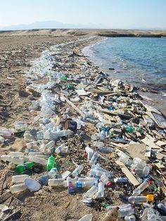 Organic farming, don't litter at beaches. pollution 40 Heartbreaking Pictures of Water Pollution Beach Pollution, Water Pollution, Plastic Pollution, Environmental Pollution, Environmental Issues, Garbage In The Ocean, Aquatic Ecosystem, Water Pictures, Environmental Science