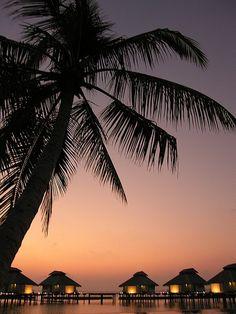Romantic sunset in Maledives. Top 20 #sunset views in the world on Black Monkey blog: http://the-black-monkey.com/blog/top-20-sunsets-in-the-world/?utm_source=Pinterest&utm_medium=Post&utm_campaign=Leggings