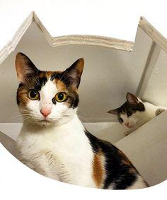 Inside Meow Parlour, NYC's First Cat Café #refinery29  http://www.refinery29.com/2014/12/79468/meow-parlour-nyc-cat-cafe