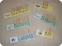 These are so cute and easy and work for any thematic unit.  I think I will add a notebook so the kids can draw a picture of their favorite animal/insect and write the name.