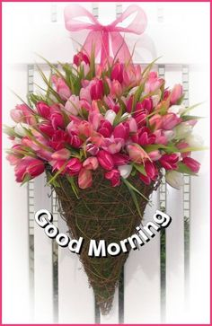 Good Morning Images, Good Morning Quotes, World Environment Day Posters, Weekday Quotes, Grapevine Wreath, Mornings, Grape Vines, Sony, Night