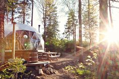 Ridgeback Lodge is a secluded glamping destination in New Brunswick, Canada. Here's what a stay inside one of their luxurious glamping domes is like. American Express Rewards, Luxury Campers, Travel Insurance Reviews, Insurance Companies, Health Insurance, New Brunswick Canada, Go Glamping, Luxury Glamping, Girls Love Travel