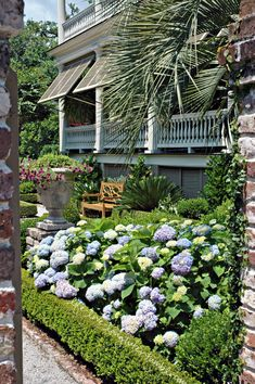a Charleston garden - love it all! Brought to you by Cookies In Bloom and Hannah's Caramel Apples   www.cookiesinbloom.com   www.hannahscaramelapples.com