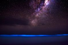 When Bioluminescence Meets the Cosmos