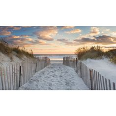 Beach Wall Art Large Canvas Art Dunes Photography Beach Path Photo... ($185) ❤ liked on Polyvore featuring home, home decor, wall art, grey, home & living, home décor, wall décor, wall hangings, canvas paintings and sunset painting