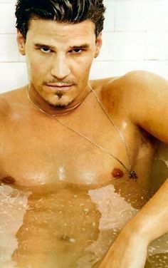 David Boreanaz Shirtless. And wet. booth!!!