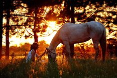 I love this picture!! I would love to be able to do this with my horse!! by Shelly Paulson Photography