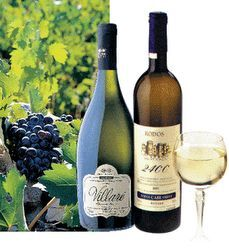 Rodian Wine location information details - Rhodes, Wines, Greece, Bottle, Island, Desserts, Image, Greece Country, Tailgate Desserts