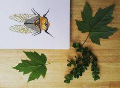 Cicada Watercolor . . #cicada #watercolor #fabercastell #art #artsy #doodle #etsy #etsyshop #handmade #etsyseller #EtsySpy #etsywins #notecard #handmadehq #handmadehollow #artist #artwork #boho #decor #homedecor #wallcandy #beachdecor #craftsposure #makersvillage #themakershaus #thhmd #makersbiz #makersgottamake #watercolorforsale #illustration