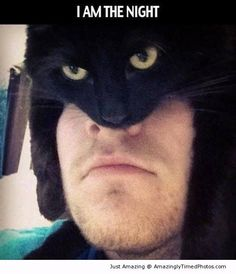 The cat man – He is the new knight of the night.