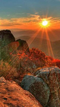 Sunset with some nature. All Nature, Amazing Nature, Beautiful World, Beautiful Images, Landscape Photography, Nature Photography, Amazing Photography, Beautiful Sunrise, Nature Pictures