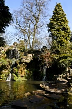 The dell in sefton park - we go and see this most days. lived and brought my children up across from here great place.