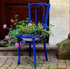 Uma cadeira antiga sem o assento, uma lata de tinta de cor vibrante e vc tem um pedaço da primavera no jardim ou dentro de casa...