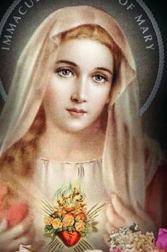 Mother Mary Images, Images Of Mary, Pictures Of Mary, Image Jesus, Jesus Christ Images, Spiritual Images, Religious Images, Catholic Pictures, Jesus Pictures