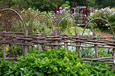 love this fencing