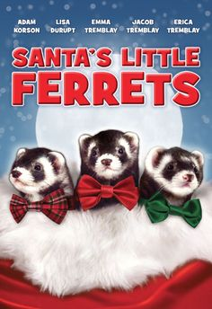 The ferret movie you've been waiting for combines ferrets and a Christmas theme, and the DVD is available to order today. Who can resist?