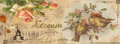 autumn facebook cover