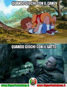 Quando giochi con il cane e quando giochi con il gatto! :D (www.VignetteItaliane.it)